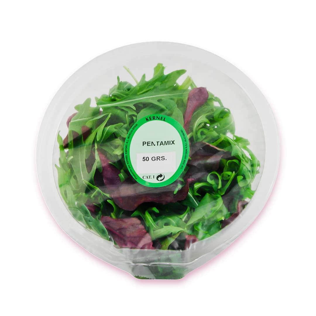 bowl-ensalada-pentamix