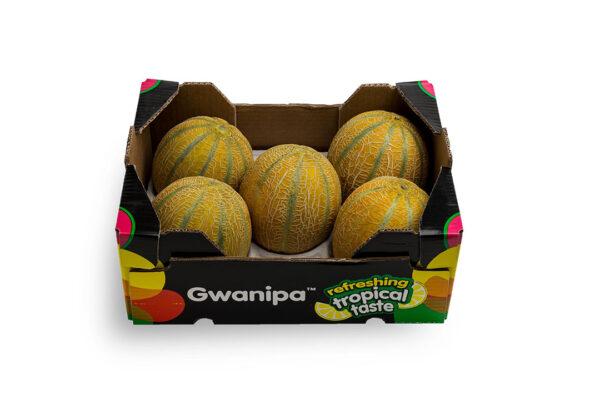 caha-gwanipa-2-1