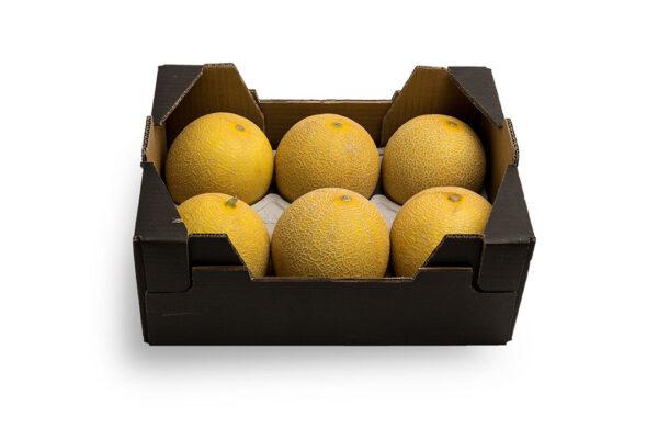 caja-galia2-1