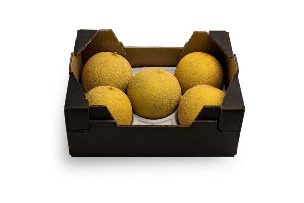 caja-galia22-1