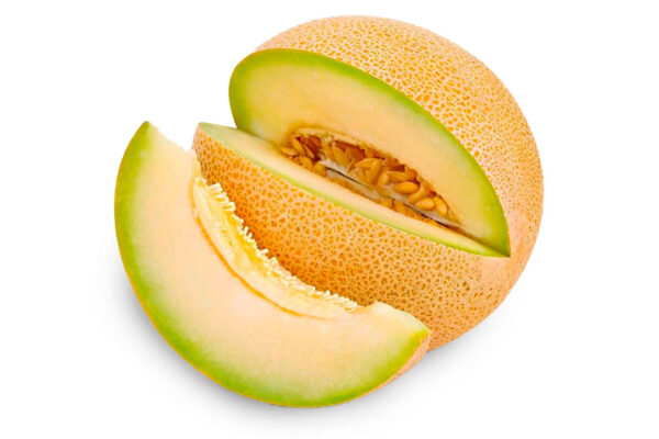 melon-galia-1