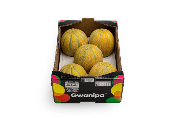 caha-gwanipa-1