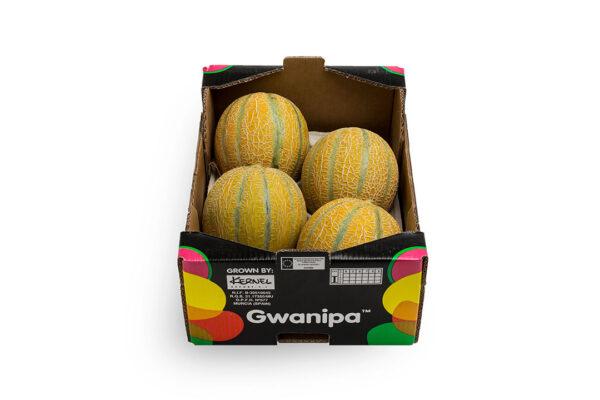 caha-gwanipa-4